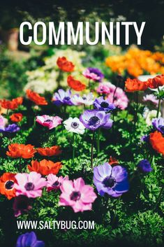 What does 'community' mean to you. For expats it can make or break you.