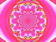 Calm Pink Lotus Mandala 1