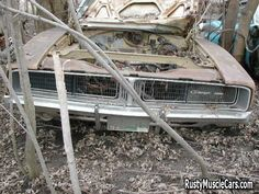 Wrecked rusted dodge charger - post rusty muscle car photos and project muscle cars for sale at RustyMuscleCars.com