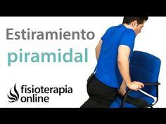 Estiramiento del piramidal para los problemas de espalda. - YouTube