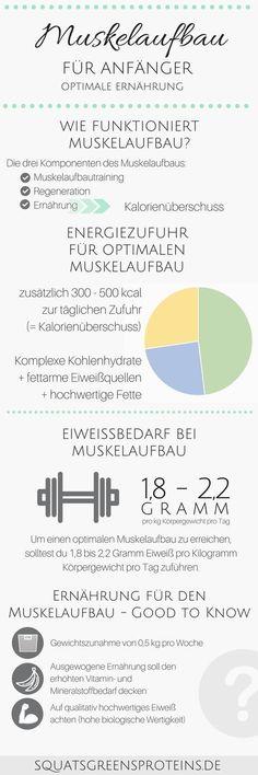 Ernährung für den Muskelaufbau - Muskelaufbau für Anfänger Infografik - Kalorienüberschuss Muskeln Aufbauen - Fitness Krafttraining Sport - Squats, Grens & Proteins