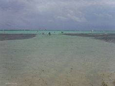 Lac Bay, Bonaire | by http://goinformed.net