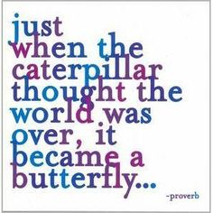 It's not easy to break through the cocoon... but it's worth it.