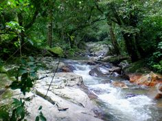 MAGIC TOUR COLOMBIA, refrescantes aguas que bajan de la Sierra Nevada de Santa Marta #minca #travel #adventure #cultures