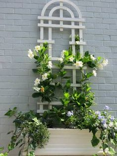 A trellis mounted on a wall breaks up otherwise blank space and gives you another place to grow flowers.