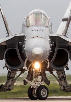 Swiss Air Force, F/A-18C Hornet, Fliegerstaffel 11