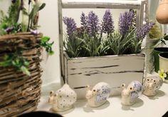 Corflor | Primavera 2016…fiori…colori e..tanta creativita'.