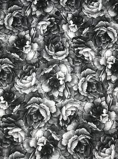 """2/"""" Wide Black Cotton Blend with  Embroidered Bright WHITE Flower Design BTY"""