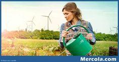 Regenerative agriculture, regenerative grazing, diversified crop development…