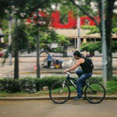 Has visto cómo está de vede #Cali por estos días? #CaliBonita #Colombia #Naturaleza #Bici #MejorEnBici #PorCaliLoHagoBien #DeCaliSeHablaBien #CaliEnMIO #DesdeLaVentana  #CaliEsVerde #Cicloruta #bicicarril