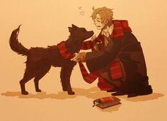 Harry Potter, Sirius Black, Remus Lupin
