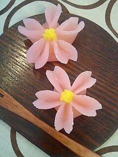 春 の 生菓子 - Wagashi Fleurs de Cerisier - Cherry Blossom Wagashi