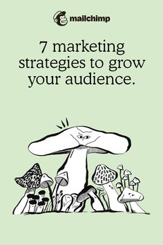 Marketing Channel, Social Channel, Starting A Business, Start Up Business, Small Business Marketing, Online Business, Business Advice, Business Planning, Real Estate Training