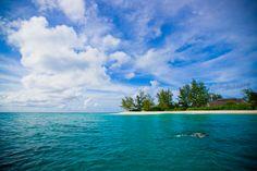 Snorkeling at Denis Private Island