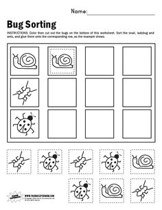 math worksheet : 1000 images about bugs on pinterest  insects worksheets and  : Sorting Worksheets Kindergarten