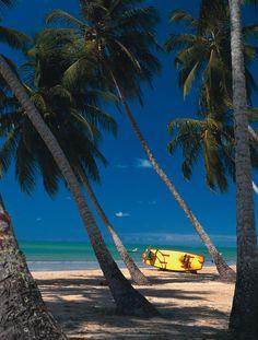 Praia de Maragogi Alagoas, Brasil