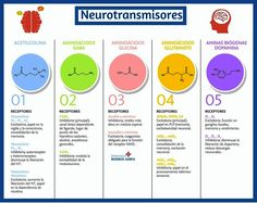 Map, Spinal Cord, Summary, Buenos Aires, Health, Location Map, Maps