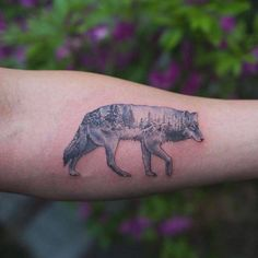 Double exposure winter wolf tattoo on the left inner forearm.