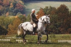 The aids and the horse: A classical approach Equestrian Outfits, Equestrian Style, Aggressive Animals, Horse Magazine, Types Of Horses, Horse Training, Horseback Riding, Dressage, Beautiful Horses
