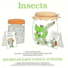 Insects MacMillan Early Science Activities Work Sheets Enviromnent Bugs New #MacMillan #WorkSheets