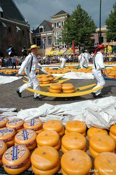 At the cheese market in Alkmaar, Netherlands
