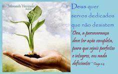 * Momento Versículos *: Perseverança - Tiago 1.4