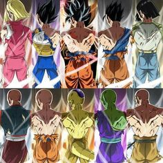 Android 18, Vegeta, Goku, Gohan, Android 17, Tien, Krillin, Golden Frieza, Piccolo, and Roshi