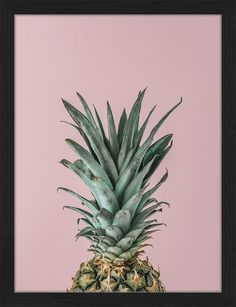Gerahmtes Poster Ripe Pineapple Close up on Pink
