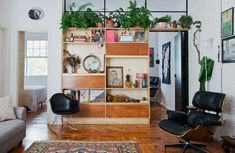Esse apartamento integrado tem estante de madeira com detalhes dourados e poltrona Eames e muitas plantas.