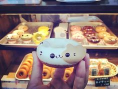 WEBSTA @ kitsune.japantrip - かわいい 😻#donuts #cat #neko #kawaii #bakery #japanesefood #food  #kyoto #japan #travel #japantrotter #traveljapan #japantrip #ilovejapan #kitsune #igersfrance #igersgironde #igersbordeaux #igersjapan #igersjp #french #girl #frenchgirl #iphonepics 10.16Photo © Virginie Bonnici