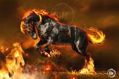 Dreadsteed by GRAPHICSOUL.deviantart.com on @deviantART