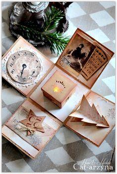 Cat-arzyna Magic Christmas Box