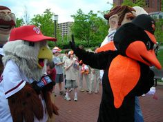 "The Oriole Bird says ""Talk to the hand."""