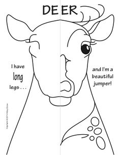 Woodland Animals Symmetry Activity Coloring Pages.  Math with Craft-Creative Writing option.