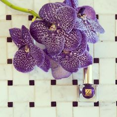 So excited about Pantone's 2014 Color of the Year: Radiant Orchid