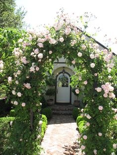 Rose arch with climbing roses: a delight for the eye and the soul! - decorate house entrance with climbing roses - Garden Cottage, Rose Cottage, Beautiful Roses, Beautiful Gardens, Rose Arbor, Garden Arches, Garden Arbor, Arbor Gate, Arbor Swing