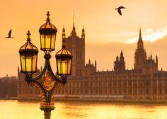 golden sunset by gutkin