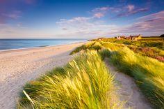 """NE-England, Northumberland, Cresswell.  Sand Dunes & Grass"" by Simon Auchterlonie, via 500px."