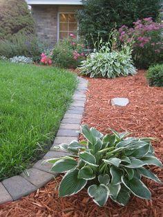 edging & landscaping idea