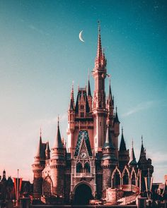Save big on your next Disney World vacation with these 30 Disney Savings Tips. Save money on hotels, tickets, souvineers, food and more! Disney World Vacation, Disney Vacations, Disney Trips, Disney Parks, Walt Disney World, Disney Land, Disney World Fotos, Disney World Pictures, Walt Disney Castle