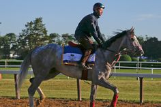 Blow-by-blow breakdown of how Lani will steal Belmont Stakes