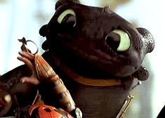 These two. They are so cute. Love it how Hiccup never scores a punch but Toothless does. :D :D :D