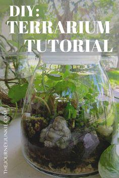 Super succulent terrarium diy step by step tutorials Ideas Terrarium Diy, How To Make Terrariums, Glass Terrarium, Purple Succulents, Succulents Diy, Planting Succulents, Diy Step By Step, Diy Crafts For Adults, House Plants Decor