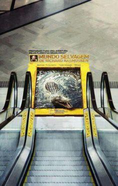 Ação da National Geographic em escada rolante. Desceria essa escada?