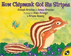 What happens when a little brown squirrel teases a big black bear? Brown Squirrel gets stripes and is called chipmunk from that day forward . . . Joseph and James Bruchac join forces to create this buoyant picture book, based on a Native American folktale.