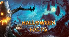 Throwing a Halloween party? Have a marvelous time on October and quiz your friends on these shocking Halloween facts and myths. Halloween Facts, Halloween Costumes, Creepy Facts, You Never Know, Blog Love, Months In A Year, Hallows Eve, Vintage Halloween, Trick Or Treat