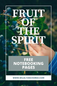 Fruit-Of-The-Spirit-Bible-Study-For-Kids-(3)