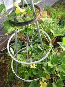 Bicycle wheel trellis - this is exactly what I needed for my overgrown tomato plants last summer!