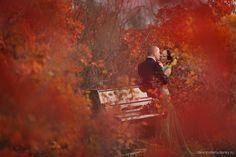 Alexander Rudenky   Wedding photographer