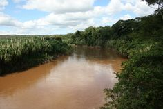 "Panoramio - Photo of Rio das Velhas Visto da Ponte Estreita - Jequitibá - Minas Gerais - Brasil - 19° 14' 8.90"" S 44° 1' 14.96"" W"